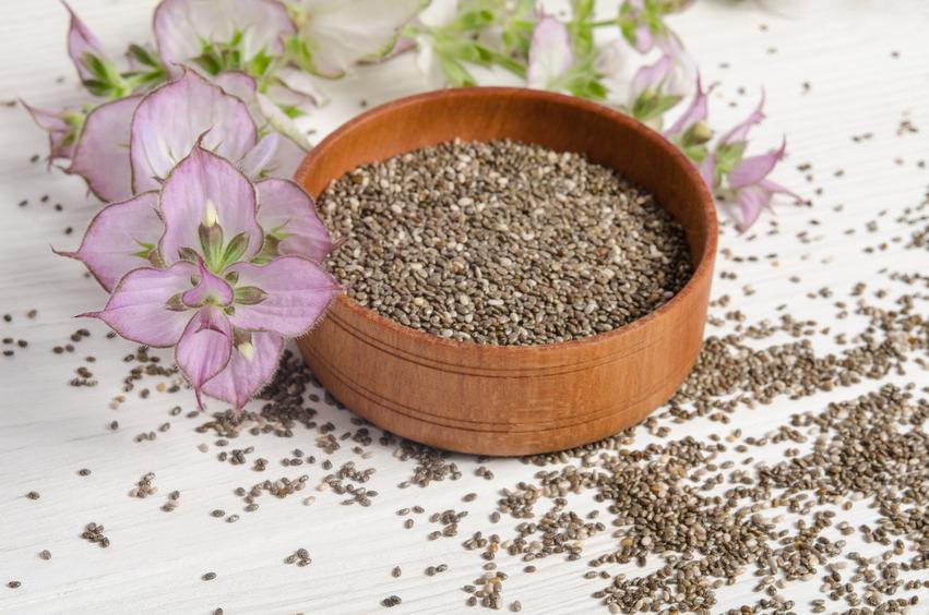 Bio Chia Samen - Superfood für die Gesundheit in Bio-Qualität