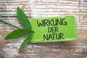 Chia Samen Wirkung der Natur